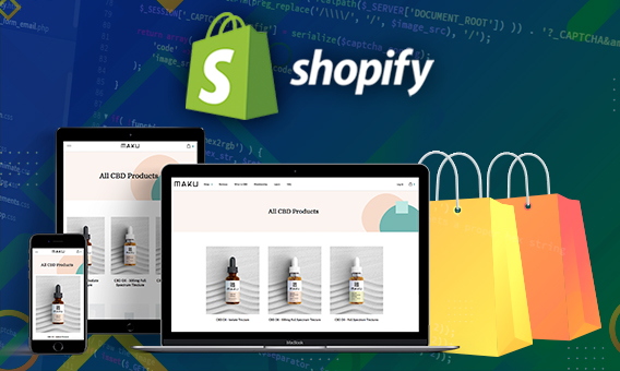 A Comprehensive Guide To Using Theme Kit In Shopify Custom Development