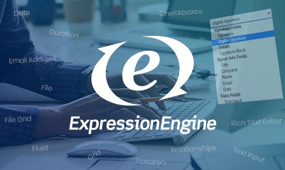 ExpressionEngine Field Type